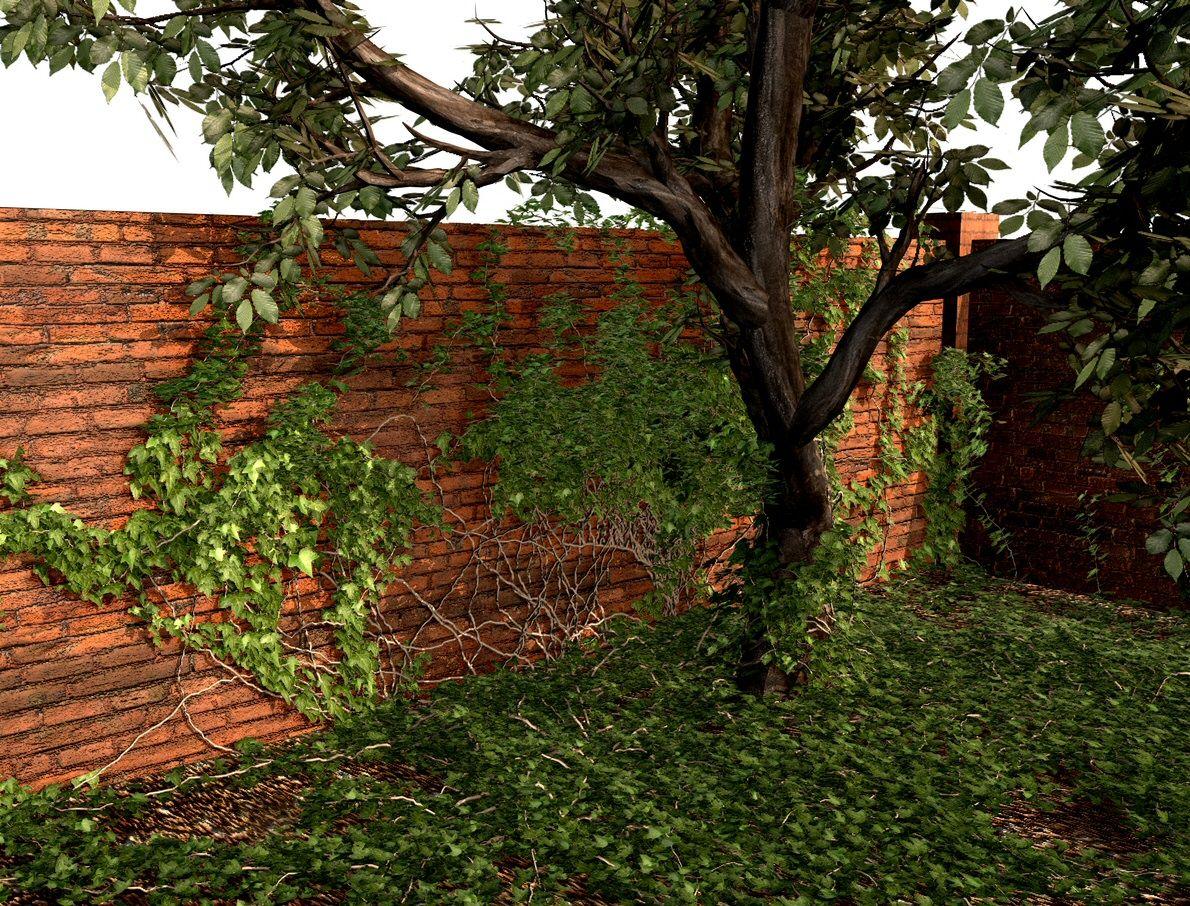 Ivy generator Image 004